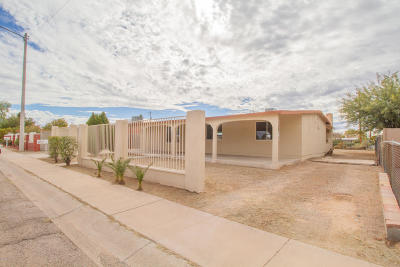 Pima County Single Family Home For Sale: 3614 E Helena Stravenue