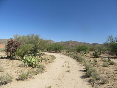 Tucson Residential Lots & Land For Sale: 1680 W Turtle Dove Lane #5 acres