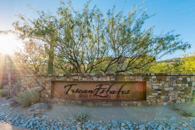 Oro Valley Residential Lots & Land For Sale: 14665 N Granite Peak Place #267
