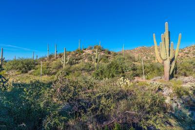 Oro Valley Residential Lots & Land For Sale: 14687 N Granite Peak Place #268