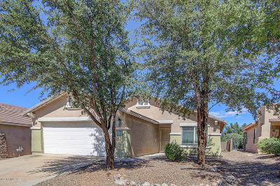 Pima County, Pinal County Single Family Home For Sale: 9654 E Belasco Loop