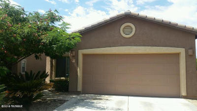Sahuarita Single Family Home Active Contingent: 1013 E Mount Shibell Drive