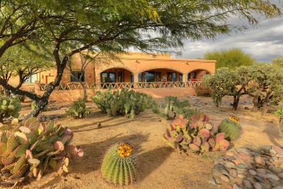 Sahuarita Single Family Home Active Contingent: 1590 W Placita Abreojos