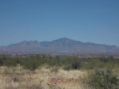 Tubac Residential Lots & Land For Sale: Frontage East Road