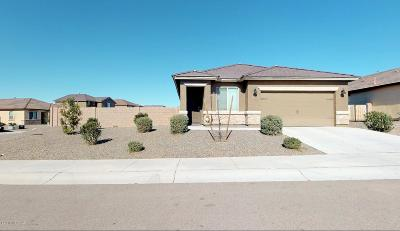 Marana Single Family Home For Sale: 11286 W Folsom Point Drive