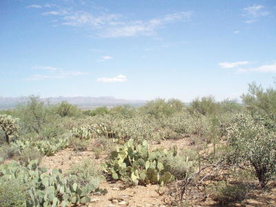 Tucson Residential Lots & Land Active Contingent: 6300 N Camino Verde