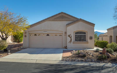 Marana Single Family Home For Sale: 5404 W Winding Desert Drive