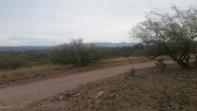 Rio Rico Residential Lots & Land For Sale: 595 W Mulberry Court #64