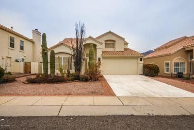 Oro Valley Single Family Home For Sale: 11728 N Labyrinth Drive