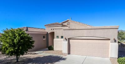 Oro Valley Single Family Home For Sale: 12069 N Washbed Drive