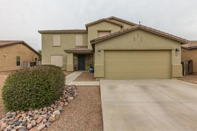 Pima County Single Family Home For Sale: 9486 N Sammy Avenue