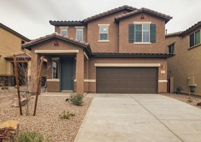 Sahuarita Single Family Home For Sale: 35 Placita Casal E