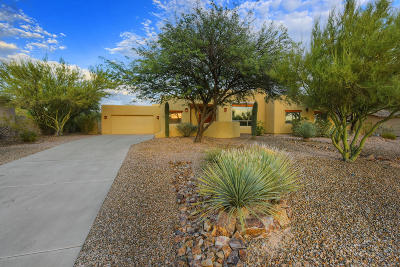 Oro Valley Single Family Home For Sale: 11534 N Ironwood Canyon Place