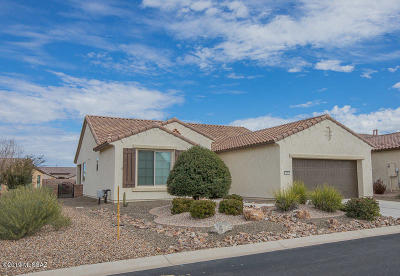 Pima County, Pinal County Single Family Home For Sale: 588 N Easter Lily Lane