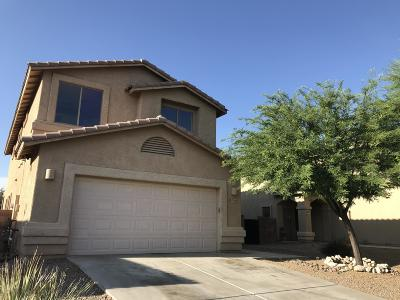 Marana Single Family Home For Sale: 11868 W Fontenelle Drive