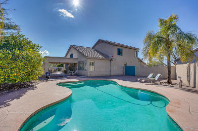 Pima County, Pinal County Single Family Home For Sale: 95 E Vineyard Place