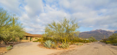 Pima County, Pinal County Single Family Home For Sale: 4521 N Homestead Avenue