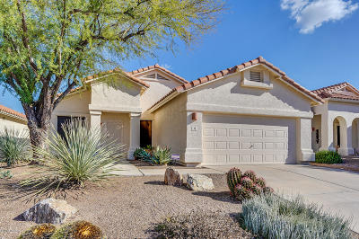 Pima County, Pinal County Single Family Home For Sale: 69 S Shrader Lane