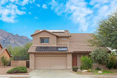 Oro Valley Single Family Home For Sale: 254 E Shore Cliff Place