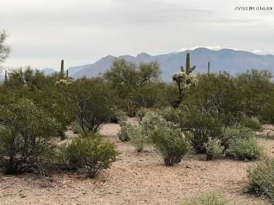 Residential Lots & Land For Sale: 3430 N Double S Spur