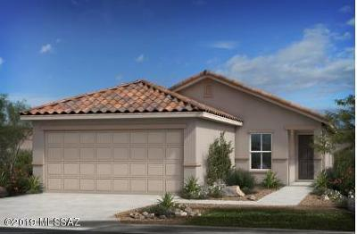 Pima County Single Family Home For Sale: 8707 N Rome Court