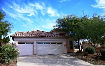 Pima County Single Family Home For Sale: 2324 W Noble Heights Drive
