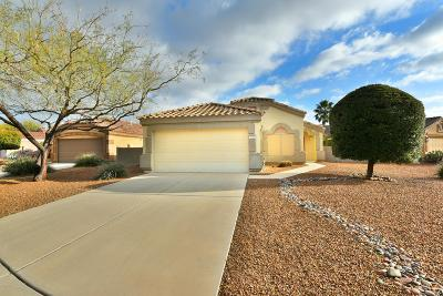 Pima County, Pinal County Single Family Home Active Contingent: 2340 N Emerald Lake Court