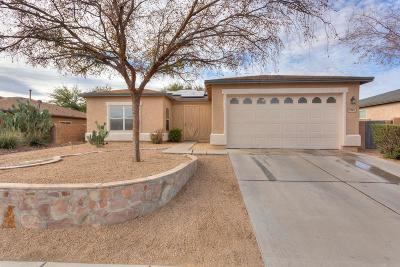 Tucson Single Family Home For Sale: 3526 S Desert Echo Road