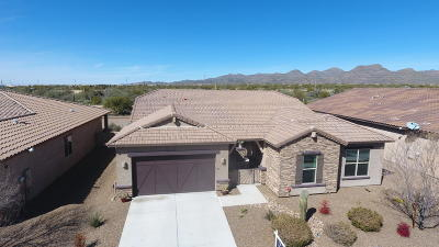 Marana Single Family Home For Sale: 4340 W Summit Ranch Place
