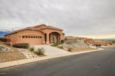 Tucson Single Family Home For Sale: 60915 E Eagle Mountain Drive