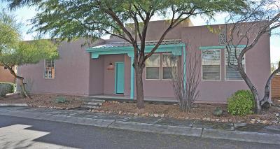 Tucson Single Family Home For Sale: 10574 E Marchetti Loop