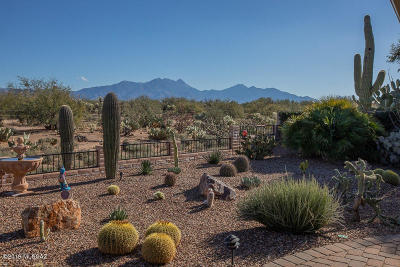 Green Valley AZ Single Family Home Active Contingent: $399,800
