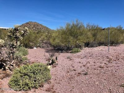 Residential Lots & Land For Sale: 6285 S Speaks Trail