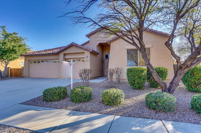 Tucson Single Family Home For Sale: 10450 E Black Willow Drive