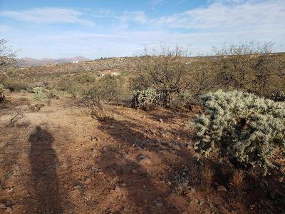 Rio Rico Residential Lots & Land For Sale: 1652 Ira Court #101
