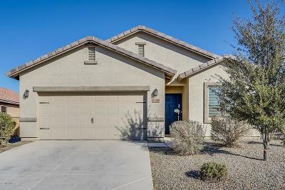 Marana Single Family Home For Sale: 11390 W Folsom Point Drive