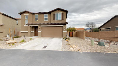Pima County Single Family Home For Sale: 3508 W Briar Rose Lane