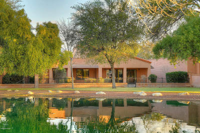 Pima County Single Family Home For Sale: 3165 N Willow Creek Drive
