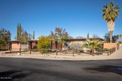 Pima County Single Family Home For Sale: 7461 E Lurlene Drive