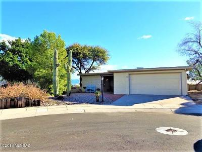 Pima County Single Family Home For Sale: 725 W Rio-Altar