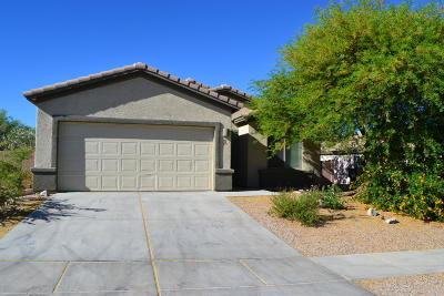 Pima County Single Family Home For Sale: 470 S Sunny Rock Drive