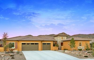 Tucson Single Family Home For Sale: 35501 S Overlook Drive