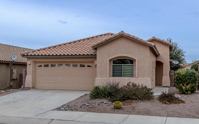 Tucson Single Family Home For Sale: 7165 E Bloomtree Lane