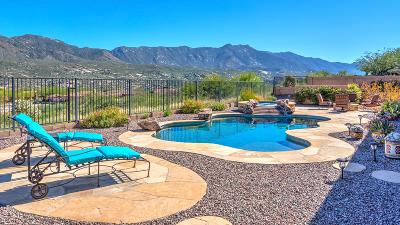 Tucson Single Family Home For Sale: 36285 S Desert Sun Drive