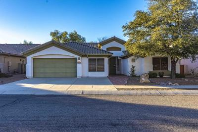 Pima County Single Family Home For Sale: 8905 N Alcante Way