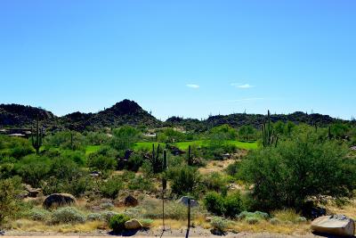 Residential Lots & Land For Sale: 1444 W Tortolita Mountain Circle #300