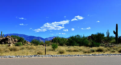 Oro Valley Residential Lots & Land For Sale: 14762 N Strong Stone Drive #302