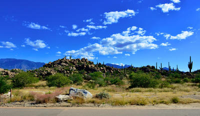 Oro Valley Residential Lots & Land For Sale: 1484 W Tortolita Mountain Circle #294