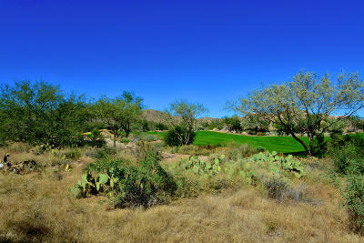 Oro Valley Residential Lots & Land For Sale: 754 W Granite Gorge Drive W #338