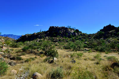 Oro Valley Residential Lots & Land For Sale: 863 W Granite Gorge Drive W #328